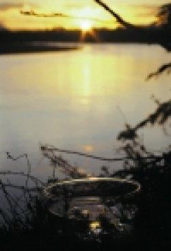 画像2: ソルスティス サン Solstice Sun
